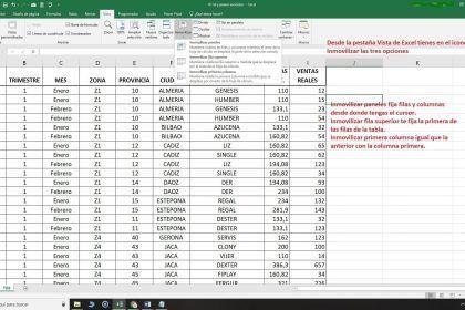 Inmovilizar paneles en Excel